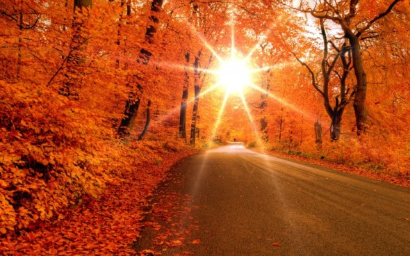 1922-autumn-road-800x600